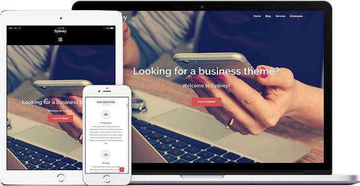 Sydney free business theme for wordpress