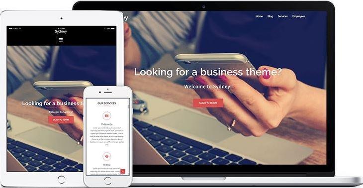 Sydney free business theme for wordpress